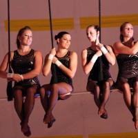 Flying High Circus