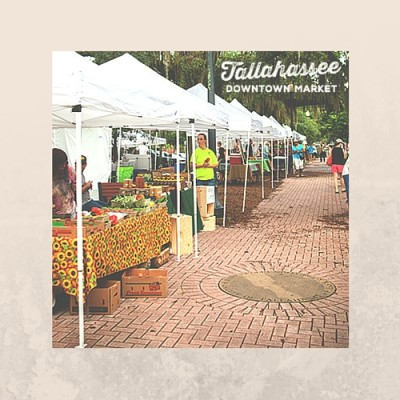 Artists/Vendors Wanted for Tallahassee Downtown Ma...