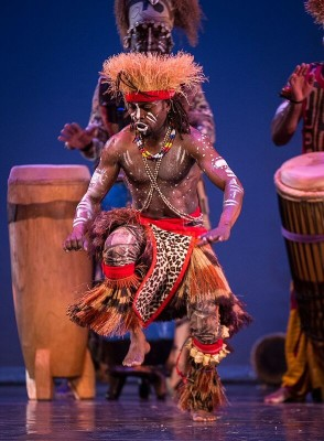19th Annual Florida African Dance Festival