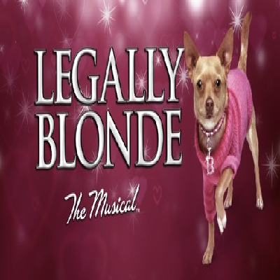 """Chiles Spring Musical: """"Legally Blonde"""""""
