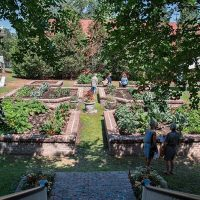 Friends of Maclay Gardens annual Tour of Gardens