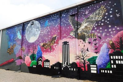 Nocturnal Tallahassee Mural