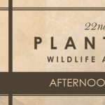 Afternoon in the Field: Presented by Thomas County Federal- Plantation Wildlife Arts Festival
