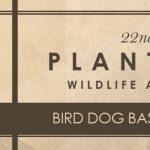 Bird Dog Bash - Plantation Wildlife Arts Festival