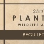 Beguiled by the Wild - Plantation Wildlife Arts Festival