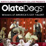 Olate Dogs - Winners of America's Got Talent