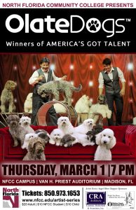 Olate Dogs - Winners of America's Got Talent