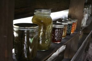 Hot Pepper Jelly Workshop