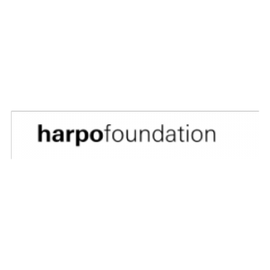 The Harpo Foundation Grants for Visual Artists