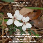 Fish Fry Fundraiser & Walking Tour of Natural Bridge