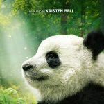 Pandas: An IMAX Experience
