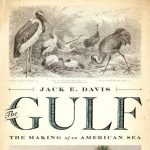 Florida and the Gulf of Mexico: History, Wisdom, and Hope
