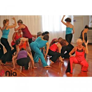 A Gateway to Change: Using Nia®, dance, movement,...
