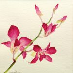 Botanical Watercolor Painting Workshop
