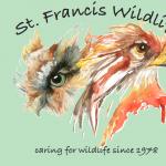 St. Francis Wildlife - 40th Anniversary Celebration