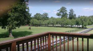 WC Dover Farm