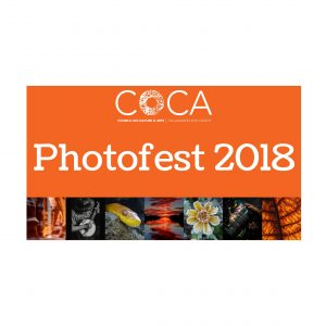 Opening Reception for Photofest 2018