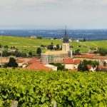 Beaujolais (Beyond Nouveau) Wine Tasting Event