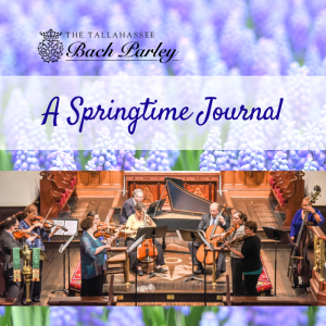 Tallahassee Bach Parley: A Springtime Journal