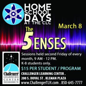 Home School Days: The Five Senses