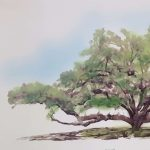Apalachicola Tree City Celebration