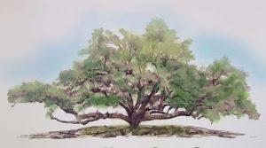 Apalachicola Tree City Celebration