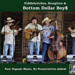 Bluegrass Sunday with The Bottom Dollar Boys and Blue Hollar