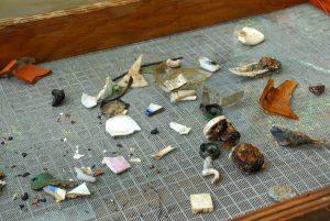 Backyard Discovery: Archaeology