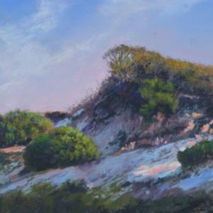 Master Artist Workshop Wendy Devarieux: Painting the Lanscape in Soft Pastel