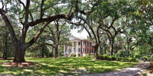 Seeking Naturalist/Educator for The Grove Museum