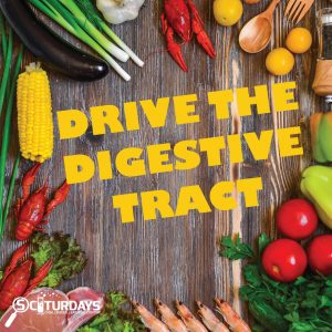 SCIturdays - Drive the Digestive Tract