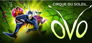 """Cirque du Soleil returns to Tallahassee with """"OVO""""..."""