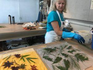 Botanical Silk Workshop