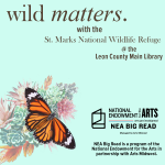 Wild Matters with the St. Marks National Wildlife Refuge