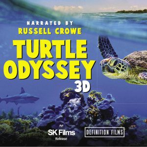 CURRENTLY CLOSED - Turtle Odyssey 3D