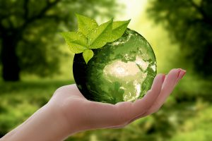 We Who Speak for the Earth: An Earth Day Poetry In...