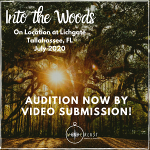 Video Auditions for Into the Woods