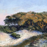 CURRENTLY CLOSED - Painting the Landscape with Soft Pastels