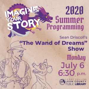 "Sean Driscoll's ""The Wand of Dreams"" Show - Leon County Library Virtual Summer Programming"