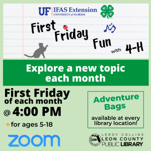 First Friday with 4-H