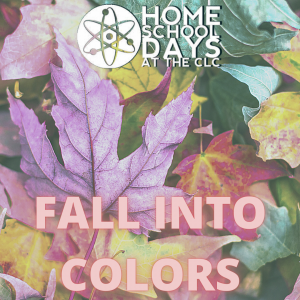 Home School Days - Fall Into Colors