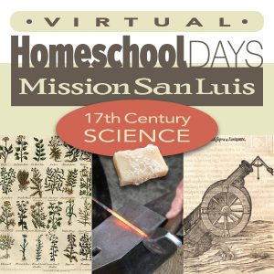 Virtual Homeschool