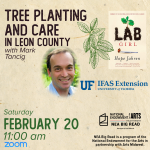Tree Planting and Care in Leon County