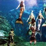 Weeki Wachee: City of Mermaids