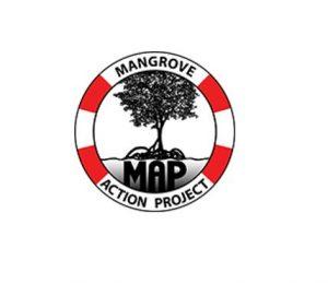21st Annual Mangrove Calendar Art Contest