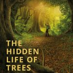 The Hidden Life of a Tree