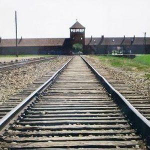 Why: Explaining the Holocaust - Speaker, Linda Dav...